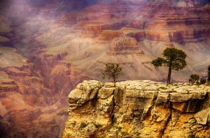 17 interesting facts about the Grand Canyon