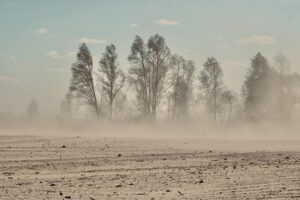 15 Interesting Facts About Dust Storms