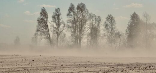 Facts about dust storms